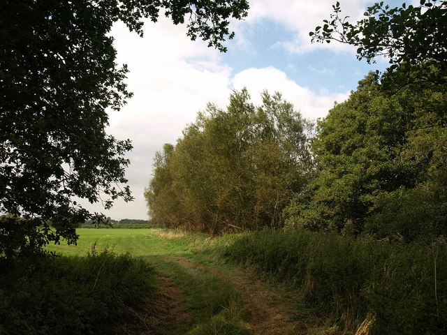 Path by the River Parrett