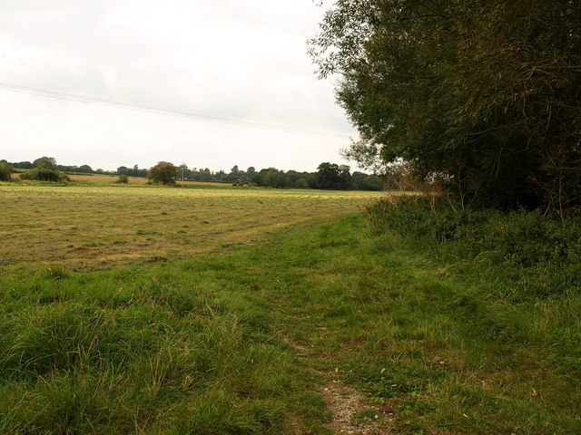 Field by the Parrett