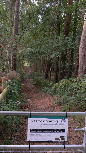 Footpath exit from car park at Longmoor