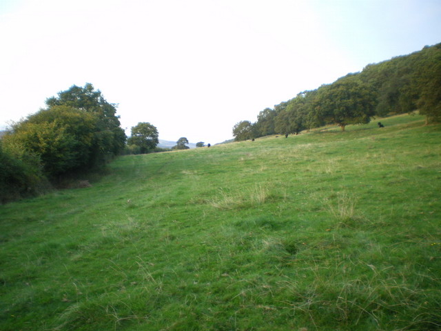 Bridleway at the field edge