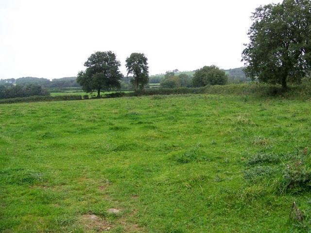 Pasture near Croscombe