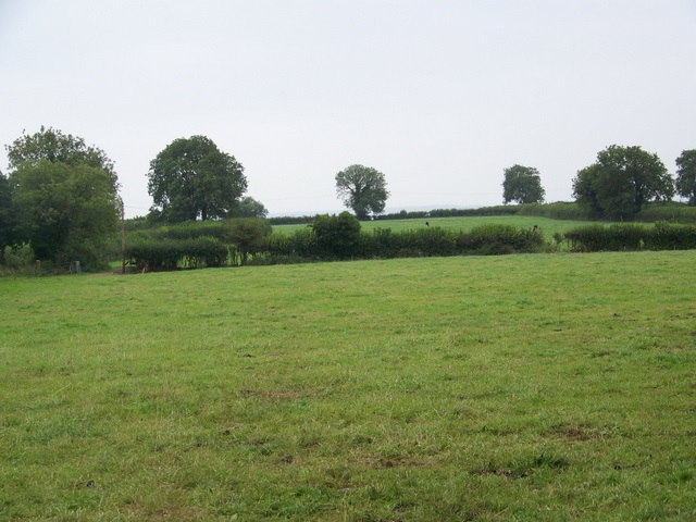 Fields near East Horrington