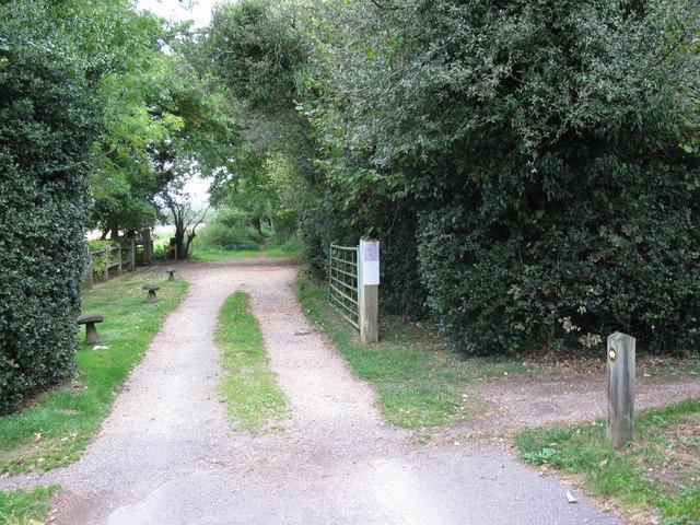 Wonham Way, Hoe