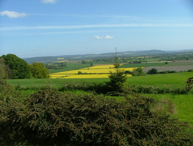 View North from Batchy Hill