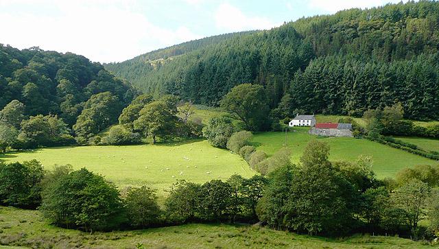 Looking towards Cwm Pisoden, Powys