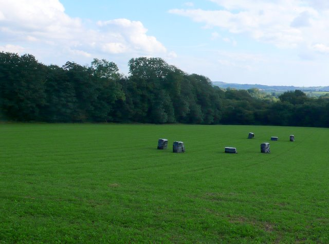 Field and Bales near Lower Strode