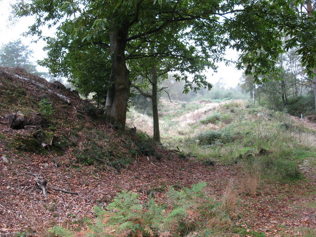 Holmbury Hill Fort