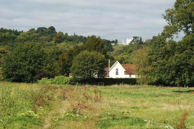 View Towards Norbury Park House, Surrey