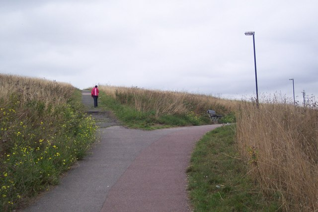 Footpath junction on the Great Lines