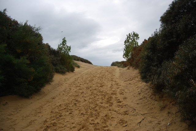 Footpath in the dunes, Camber Sands