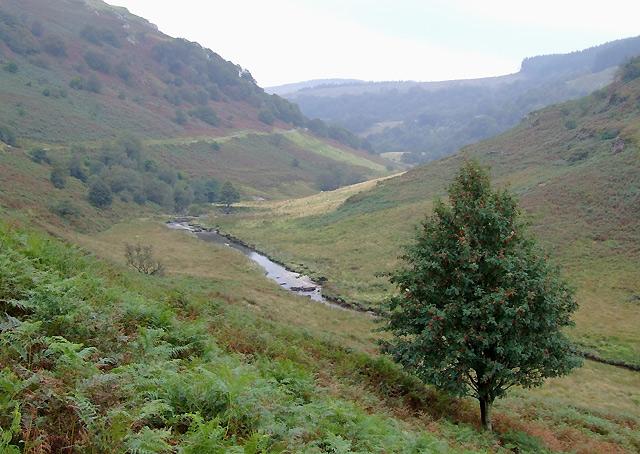 Cwm Irfon north of Abergwesyn, Powys
