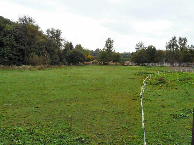 Grazing Land at Kingston