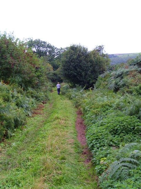 Mill Hills Lane