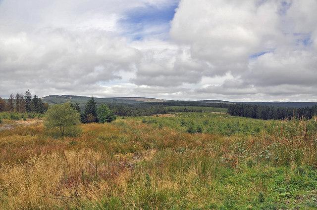 View toward Coed Morgannwg Way - Mynydd Blaen-nant-du