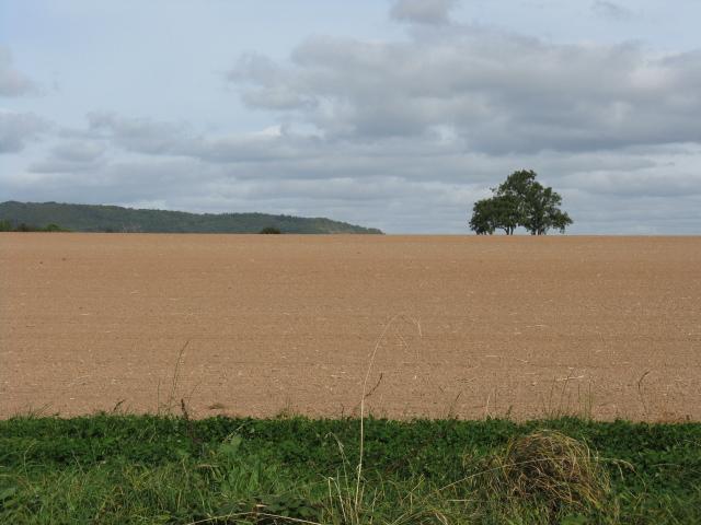 Huge Field, Bank Farm