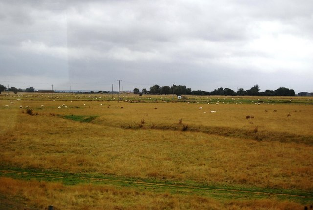 A pastoral landscape on the edge of the Romney Marshes