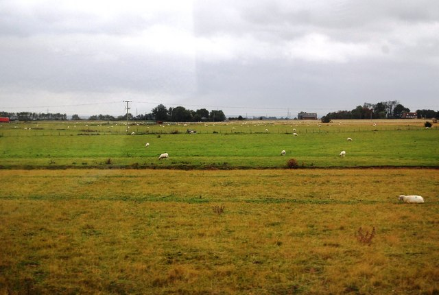 Rough pasture & improved pasture