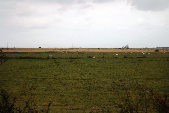 A pastoral landscape, Camber rd