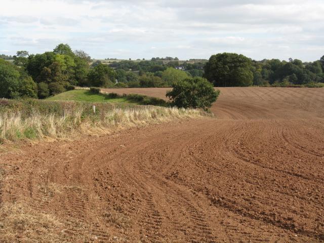 Fieldscape, Court Farm, Shrawley