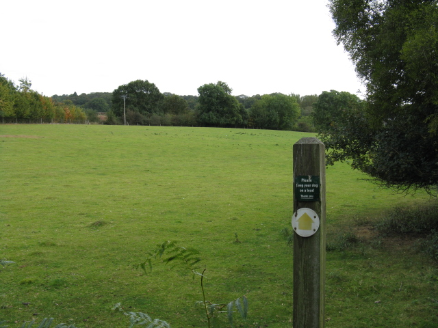 Footpath To Frog Pool
