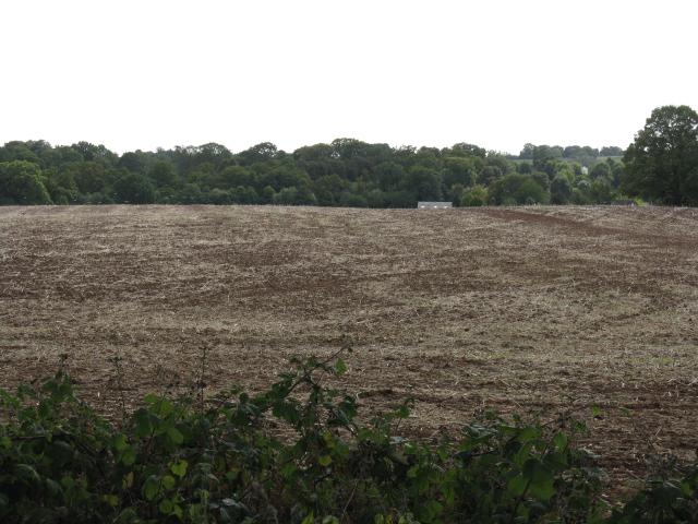 Field South Of Shrawley Wood