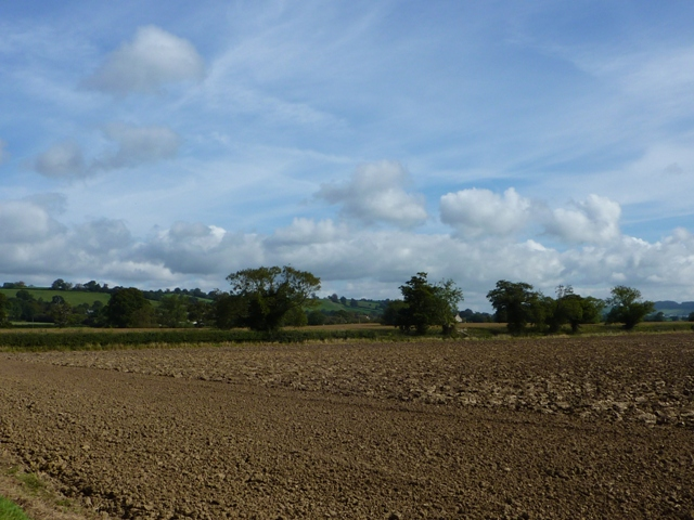 Ploughed field south of Wraxall
