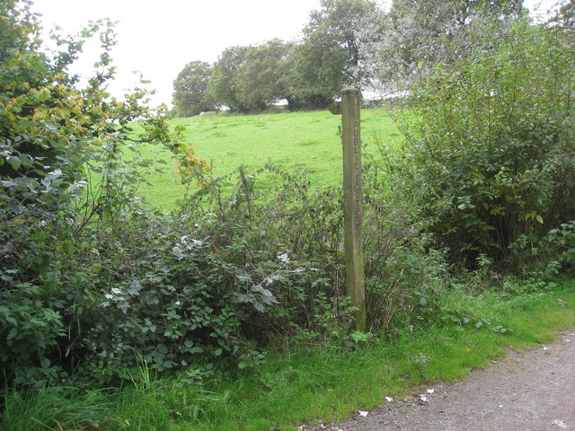 Sett Valley Trail - Footpath near Wildes Crossing Cottage