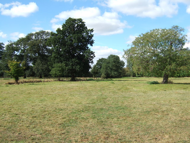 Pasture on The Peckover Estate, Wisbech