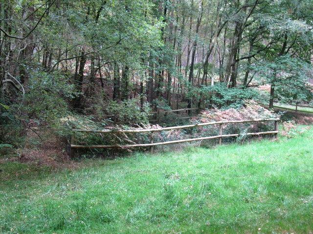 Rectangular fence, Winterfold Wood