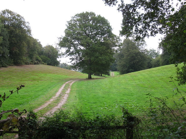 Valley near Lockhurst Hatch Farm