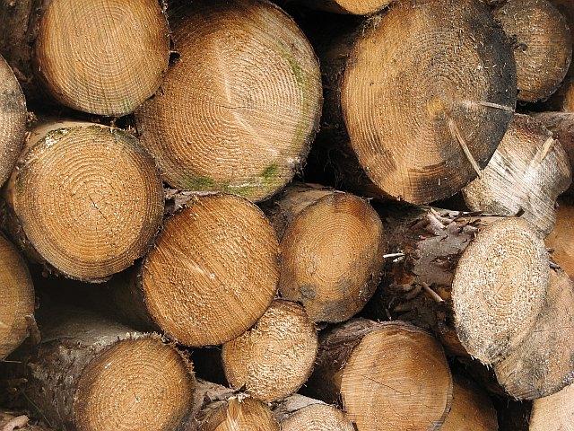 Logs, Gleann Sleibhtecoire