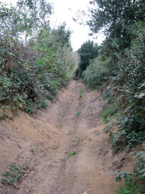 Part of Ponds Lane