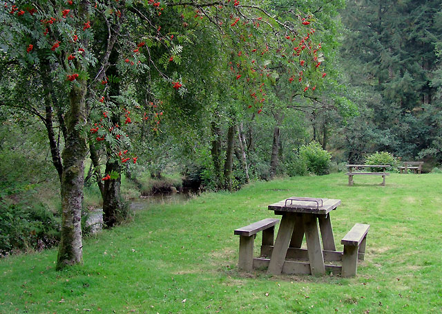 Picnic site at Pwll Bo, Powys