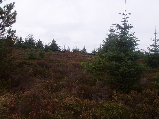 Top of the N.E. spur of Monluth Hill