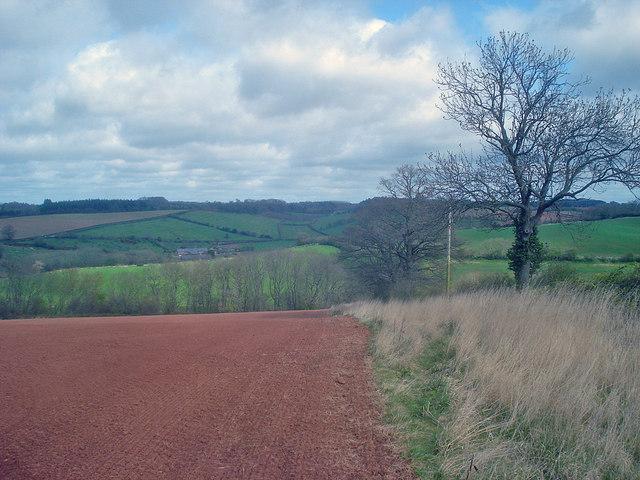 Farmland north of Docklow