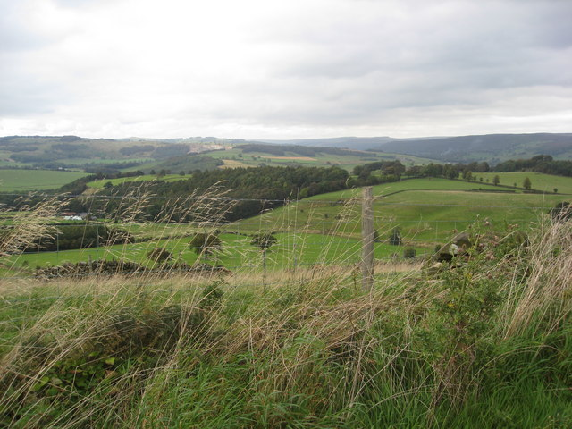 View from Handley Lane