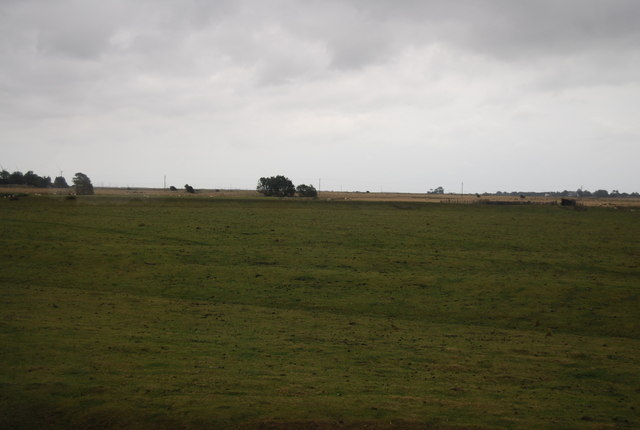 Pasture near Camber Rd
