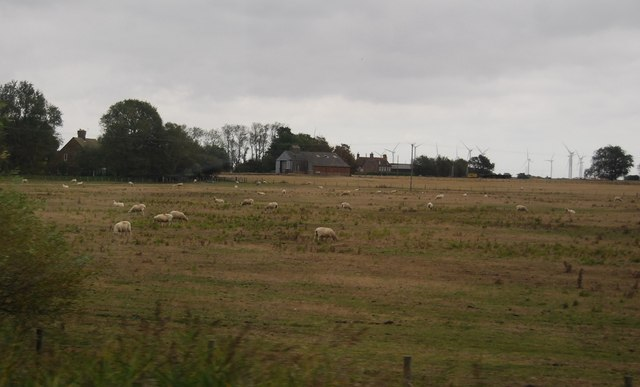 Farm buildings off Camber Rd