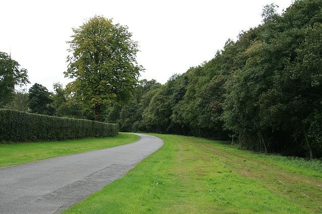 Ranmore Common Road near North Lodge