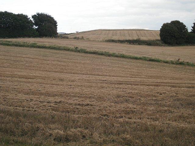 Arable land, East Wemyss