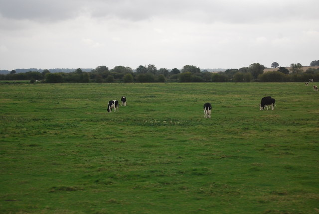 Pasture by the River Rother