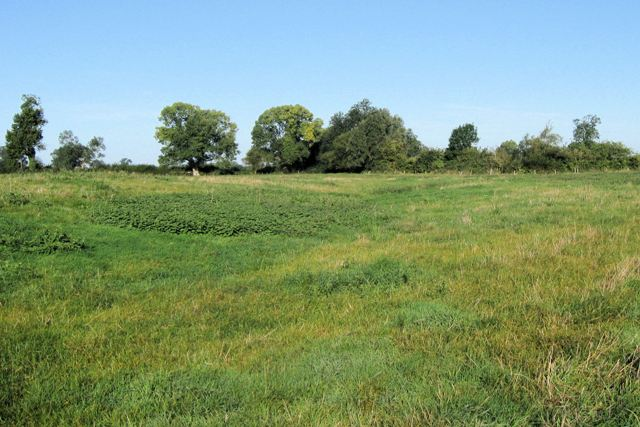 Site of the Medieval Village of Puttenham (2)