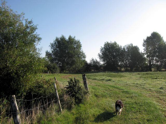 Site of the Medieval Village of Puttenham (3)