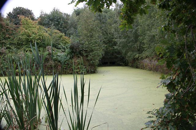 Hemmingfield basin