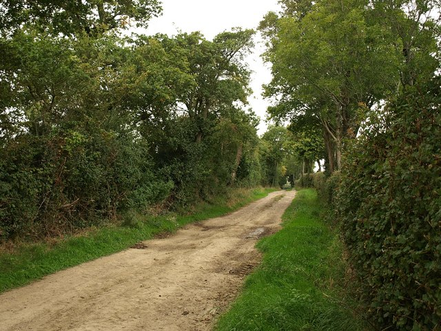 Bridleway by the A356