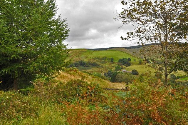 Mynydd Corrwg Fechan - Glyncorrwg