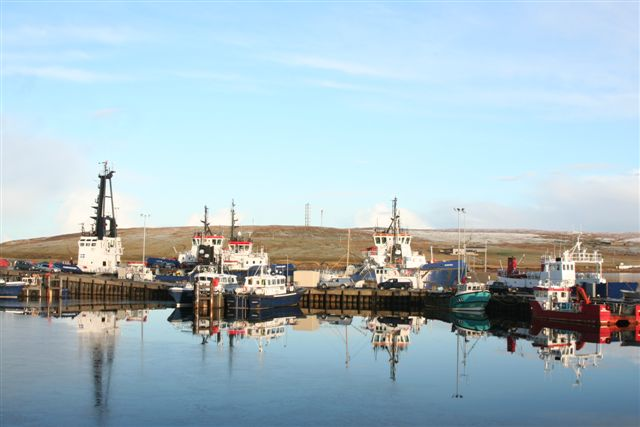 Tugs and pilot boats at the jetties