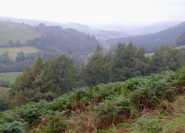 Cwm Irfon on a misty afternoon, Powys