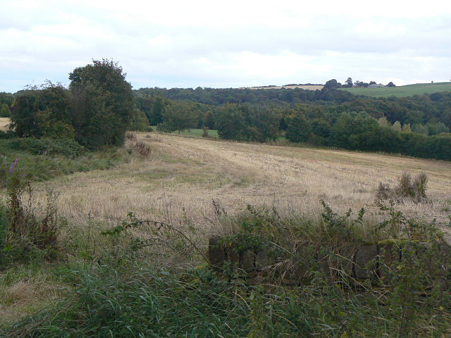 Cropped field near Skiers Hall