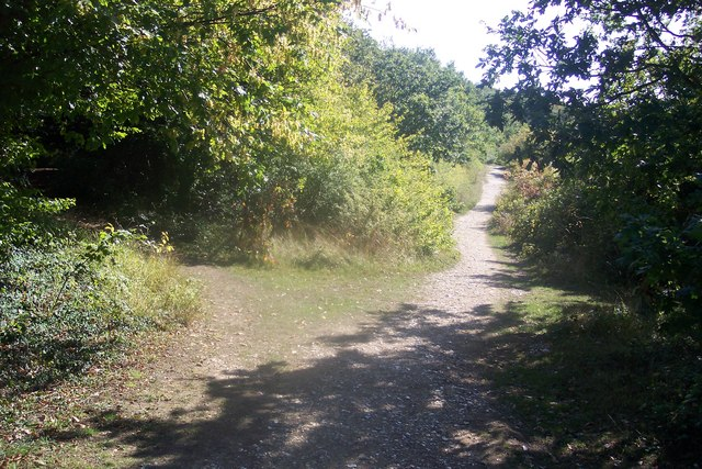 Footpath junction near West Hoath Wood